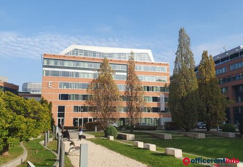 Offices to let in Infopark E Sublease